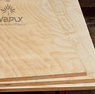 Sub floor products-Plywood